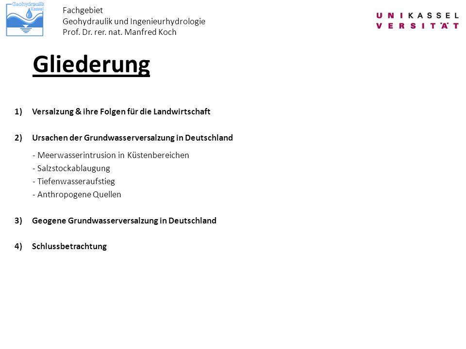 Gliederung Fachgebiet Geohydraulik und Ingenieurhydrologie Prof. Dr. rer. nat. Manfred Koch 1)Versalzung & ihre Folgen für die Landwirtschaft 2)Ursach