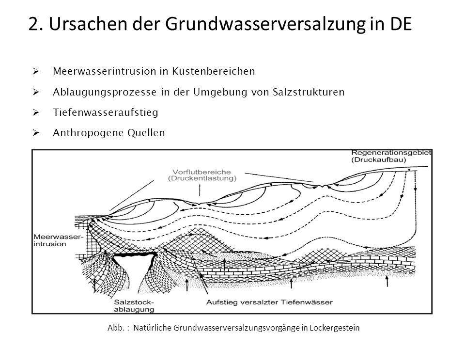 Meerwasserintrusion in Küstenbereichen Ablaugungsprozesse in der Umgebung von Salzstrukturen Tiefenwasseraufstieg Anthropogene Quellen 2. Ursachen der