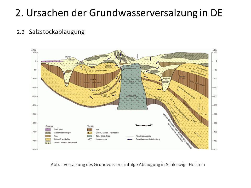 2.2 Salzstockablaugung Abb. : Versalzung des Grundwassers infolge Ablaugung in Schleswig - Holstein 2. Ursachen der Grundwasserversalzung in DE