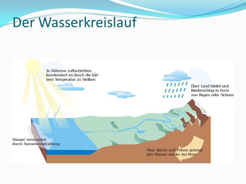 Der Wasserkreislauf