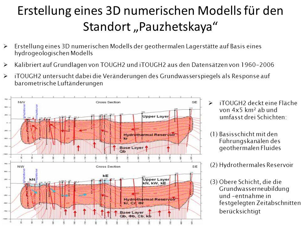 Erstellung eines 3D numerischen Modells für den Standort Pauzhetskaya Erstellung eines 3D numerischen Modells der geothermalen Lagerstätte auf Basis e