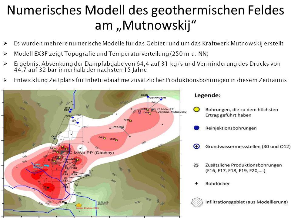 Numerisches Modell des geothermischen Feldes am Mutnowskij Es wurden mehrere numerische Modelle für das Gebiet rund um das Kraftwerk Mutnowskij erstel