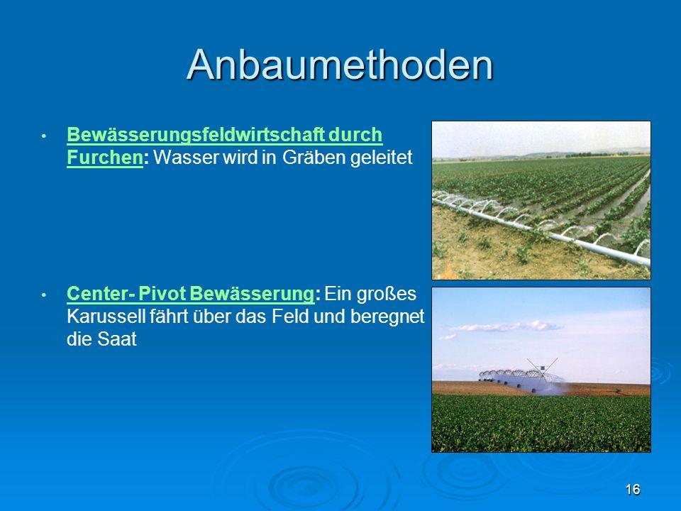 Anbaumethoden Bewässerungsfeldwirtschaft durch Furchen: Wasser wird in Gräben geleitet Bewässerungsfeldwirtschaft durch Furchen Center- Pivot Bewässer