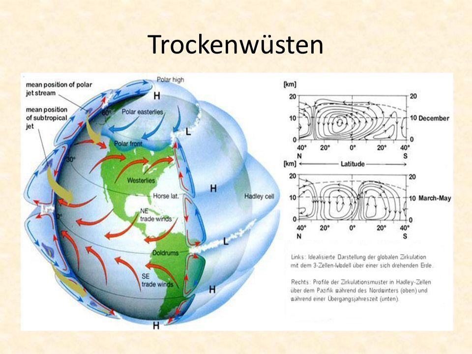 Entstehung Trockenwüste Starke Sonneneinstrahlung am Äquator erwärmt Erde Wasser verdunstet + feuchte Luft steigt auf Quellwolken können in großer Höhe nicht weiter aufsteigen + driften nach Norden & Süden ab Hohe Luftfeuchtigkeit = starke Regenfälle in Äquatornähe Abgekühlte Luft sinkt, da keine Feuchtigkeit mehr enthalten ist (geschieht im Bereich der Wendekreise) Absteigende Luft bewirkt, dass sich Wolken komplett auflösen Wo keine Wolken sind, kein Niederschlag, somit Bildung von Wüsten