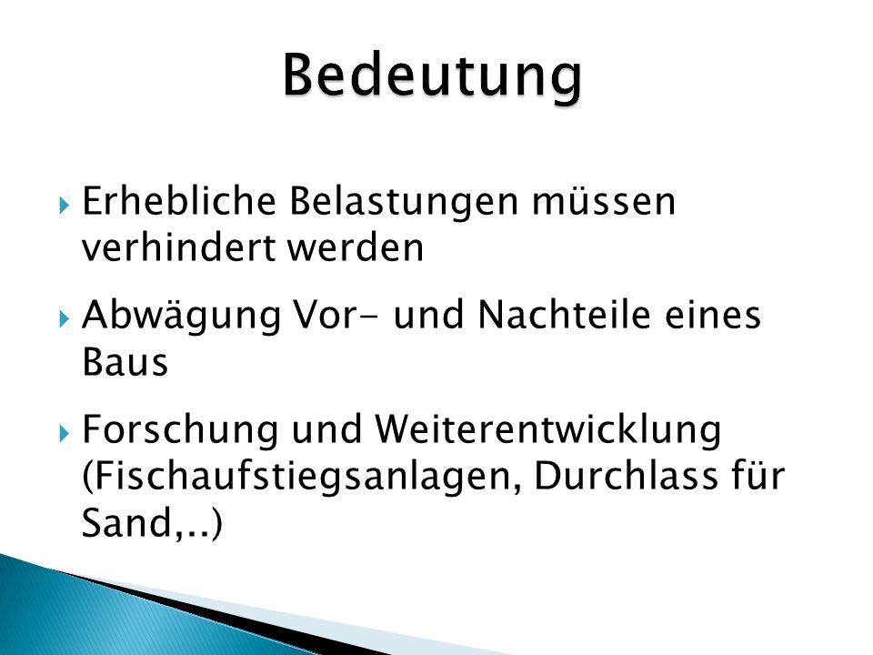 www.wasser-wissen.de/abwasserlexikon/s/staudamm.htm http://www.energie-visions.de/lexikon/staudamm.html www.scienexx.de/dossier-111-1.hmtl http://www.rivernet.org/turquie/reisbed.html www.wikipedia.org