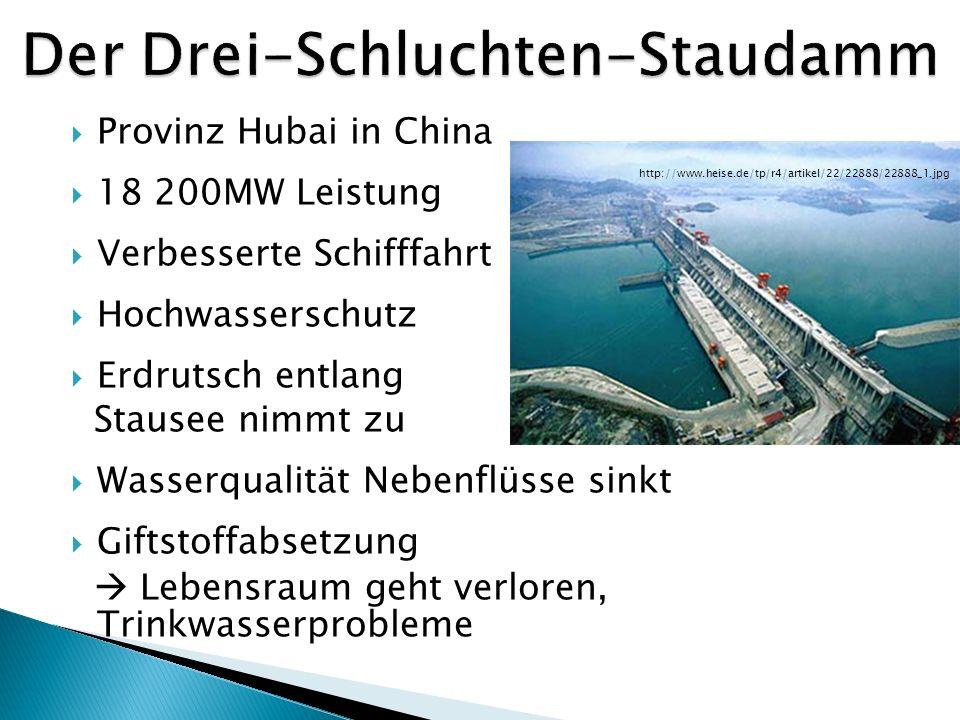 Erhebliche Belastungen müssen verhindert werden Abwägung Vor- und Nachteile eines Baus Forschung und Weiterentwicklung (Fischaufstiegsanlagen, Durchlass für Sand,..)