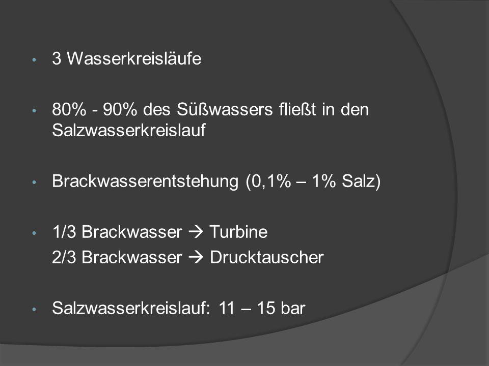 3 Wasserkreisläufe 80% - 90% des Süßwassers fließt in den Salzwasserkreislauf Brackwasserentstehung (0,1% – 1% Salz) 1/3 Brackwasser Turbine 2/3 Brack