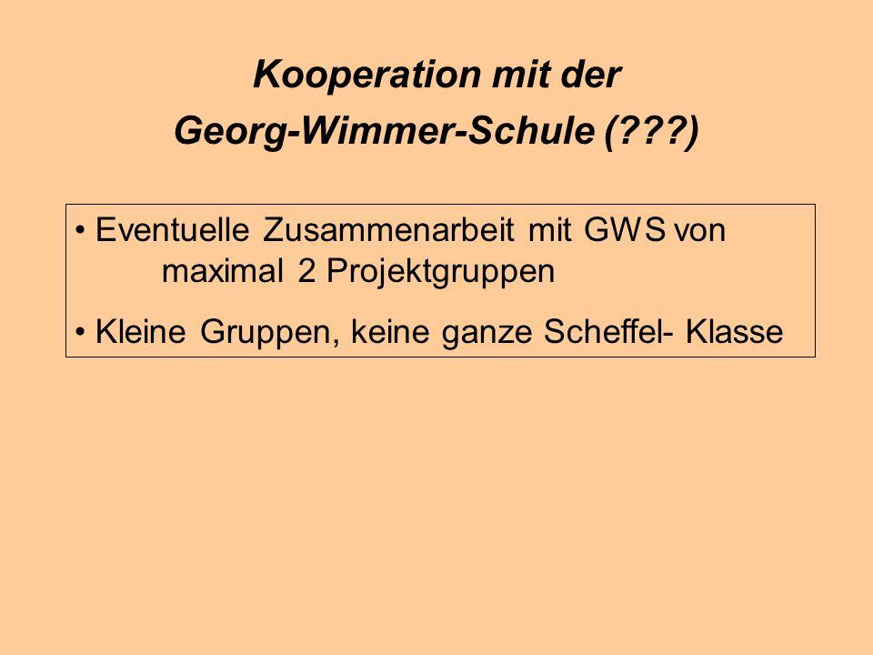 Kooperation mit der Georg-Wimmer-Schule (???) Eventuelle Zusammenarbeit mit GWS von maximal 2 Projektgruppen Kleine Gruppen, keine ganze Scheffel-Klasse