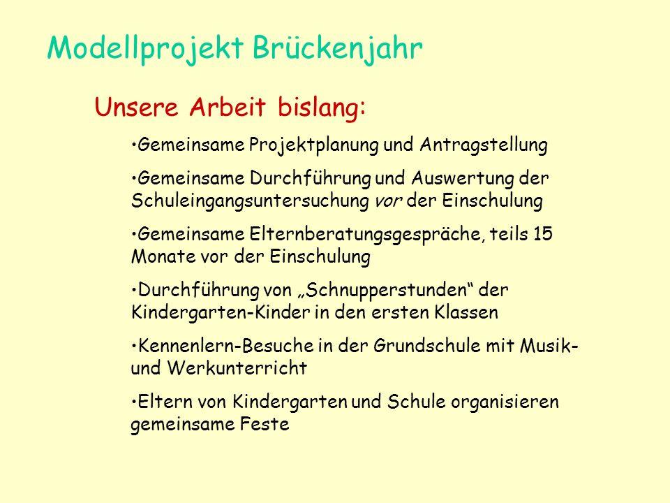 Modellprojekt Brückenjahr Unsere Arbeit bislang: Gemeinsame Projektplanung und Antragstellung Gemeinsame Durchführung und Auswertung der Schuleingangs