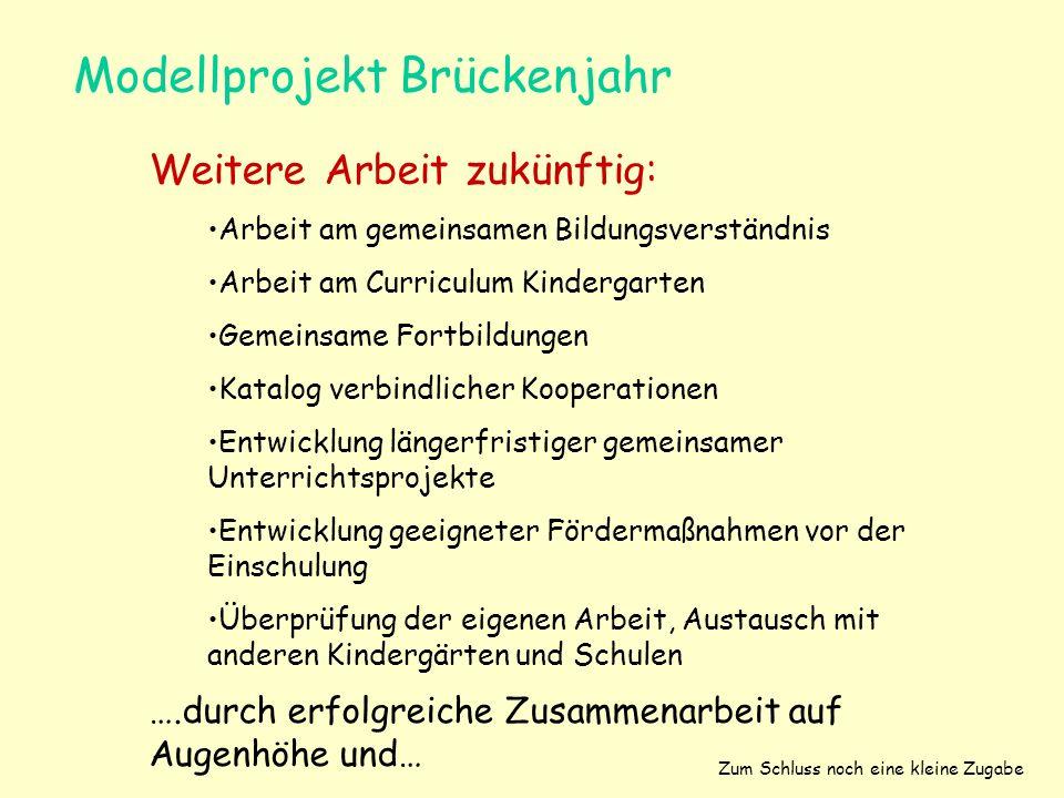 Modellprojekt Brückenjahr Weitere Arbeit zukünftig: Arbeit am gemeinsamen Bildungsverständnis Arbeit am Curriculum Kindergarten Gemeinsame Fortbildung
