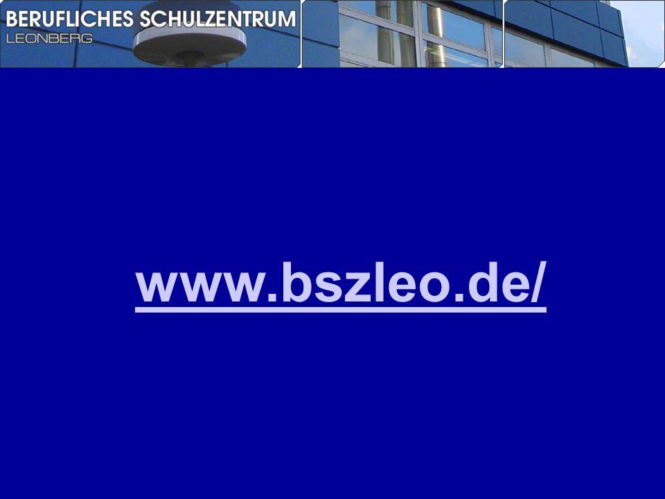www.bszleo.de/