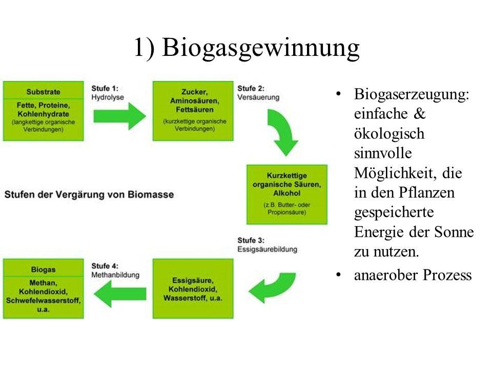 1) Biogasgewinnung Biogaserzeugung: einfache & ökologisch sinnvolle Möglichkeit, die in den Pflanzen gespeicherte Energie der Sonne zu nutzen. anaerob