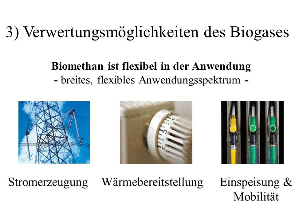 3) Verwertungsmöglichkeiten des Biogases StromerzeugungWärmebereitstellungEinspeisung & Mobilität Biomethan ist flexibel in der Anwendung - breites, f
