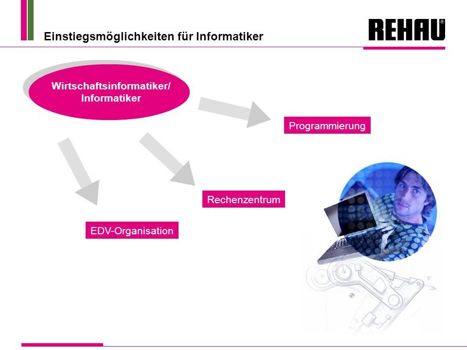 Einstiegsmöglichkeiten für Informatiker Wirtschaftsinformatiker/ Informatiker EDV-Organisation Rechenzentrum Programmierung