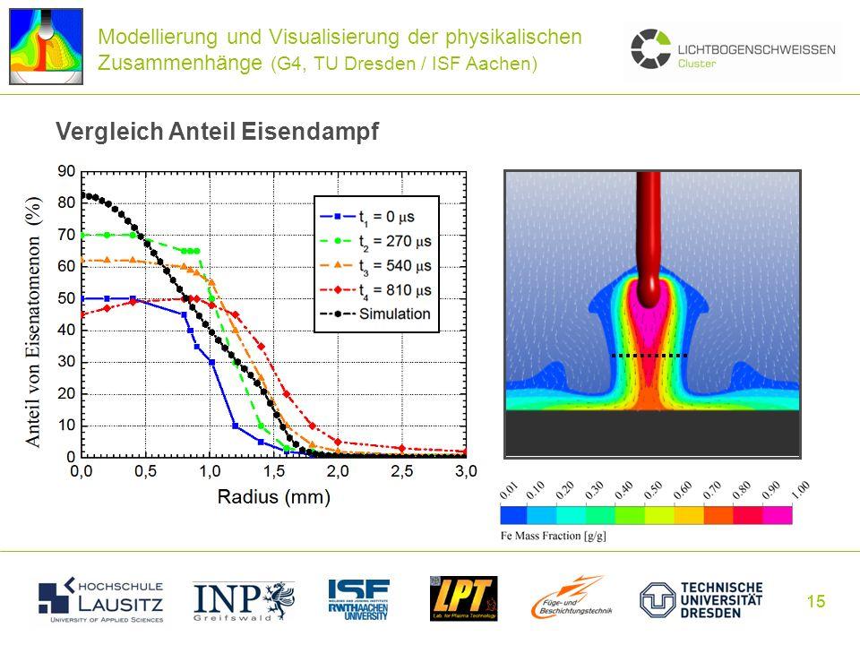 15 Modellierung und Visualisierung der physikalischen Zusammenhänge (G4, TU Dresden / ISF Aachen) Vergleich Anteil Eisendampf