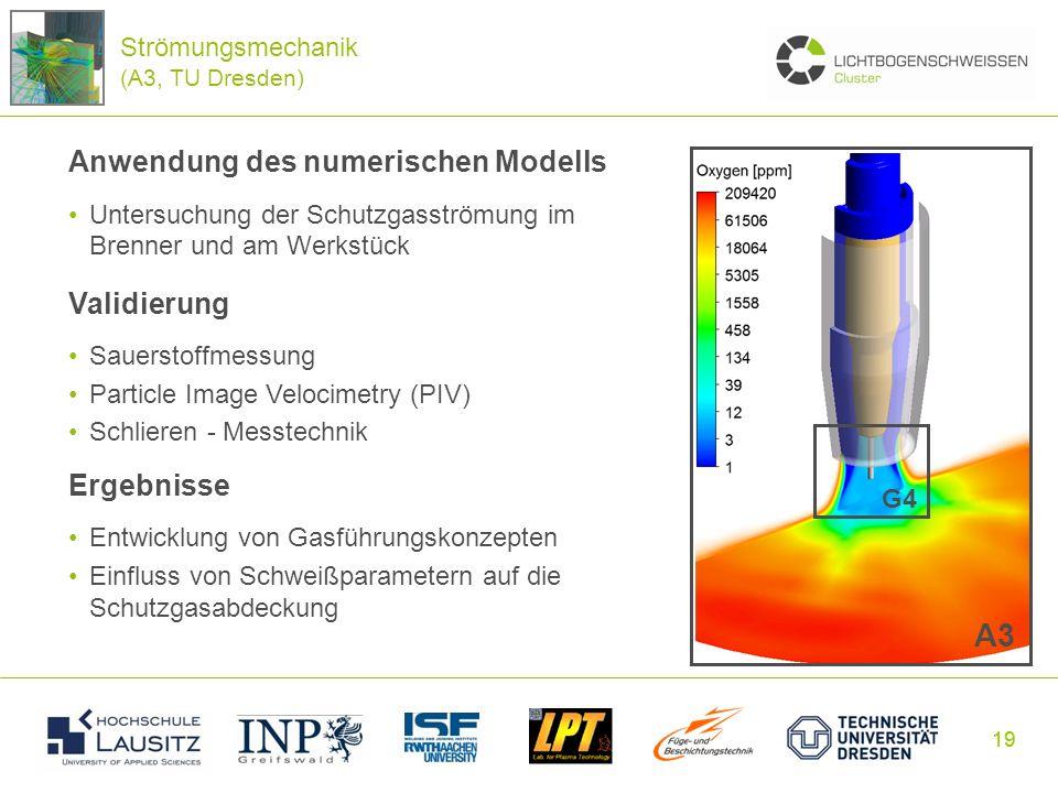 19 Anwendung des numerischen Modells Untersuchung der Schutzgasströmung im Brenner und am Werkstück Validierung Sauerstoffmessung Particle Image Veloc