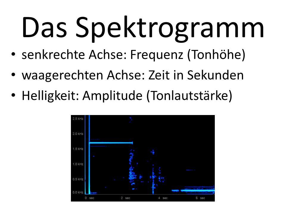 Amplitude beim Schall Regelt die Lautstärke Kann man an einem Oszilloskop an der Höhe der Schwingungen erkennen