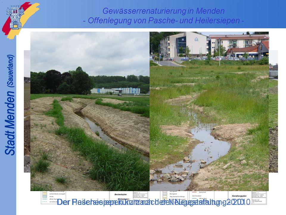 Gewässerrenaturierung in Menden - Offenlegung von Pasche- und Heilersiepen - Der Paschesiepen kurz nach der Neugestaltung - 2010Der Heilersiepen kurz