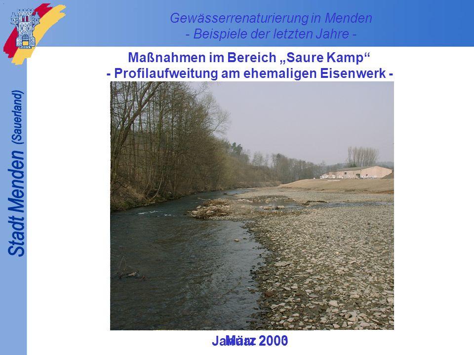 Gewässerrenaturierung in Menden - Beispiele der letzten Jahre - Maßnahmen im Bereich Saure Kamp - Profilaufweitung am ehemaligen Eisenwerk - Januar 20
