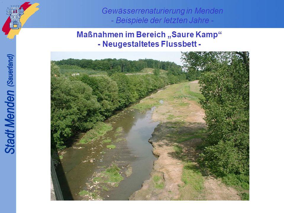 Gewässerrenaturierung in Menden - Beispiele der letzten Jahre - Maßnahmen im Bereich Saure Kamp - Neugestaltetes Flussbett -