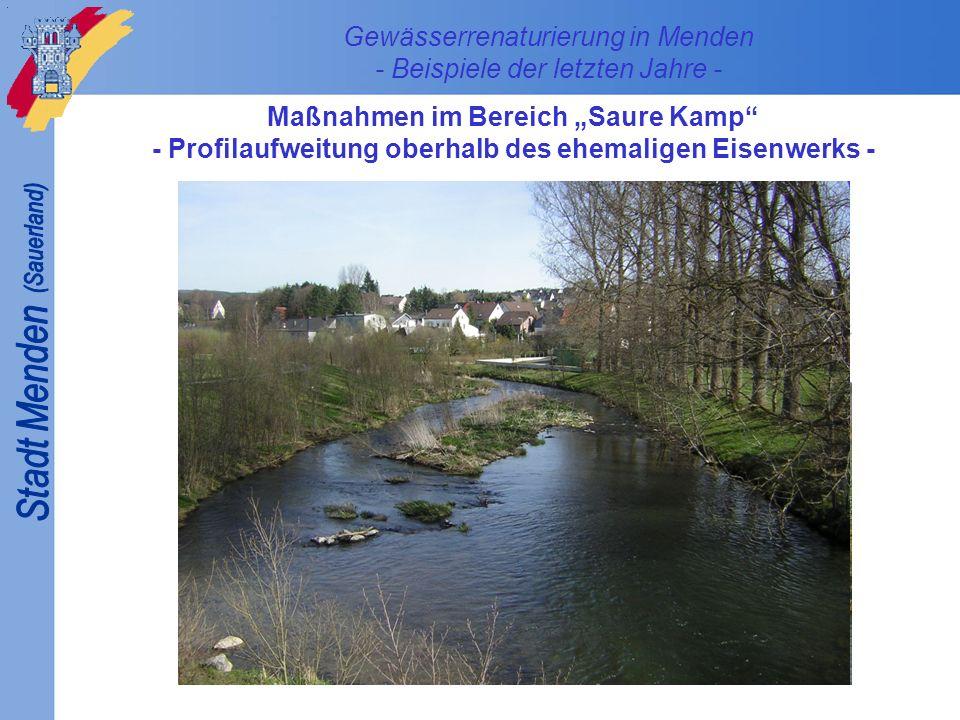 Gewässerrenaturierung in Menden - Beispiele der letzten Jahre - Maßnahmen im Bereich Saure Kamp - Beseitigung des hde-Wehres -