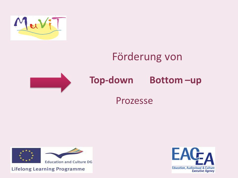 Förderung von Top-downBottom –up Prozesse