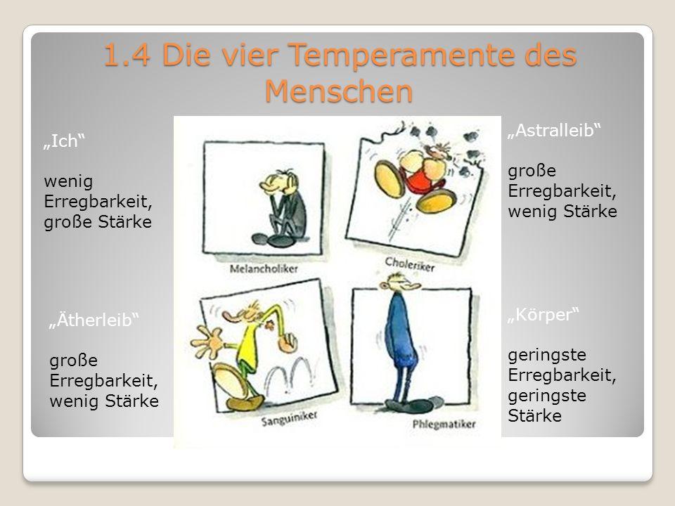 1.4 Die vier Temperamente des Menschen Astralleib große Erregbarkeit, wenig Stärke Körper geringste Erregbarkeit, geringste Stärke Ich wenig Erregbark