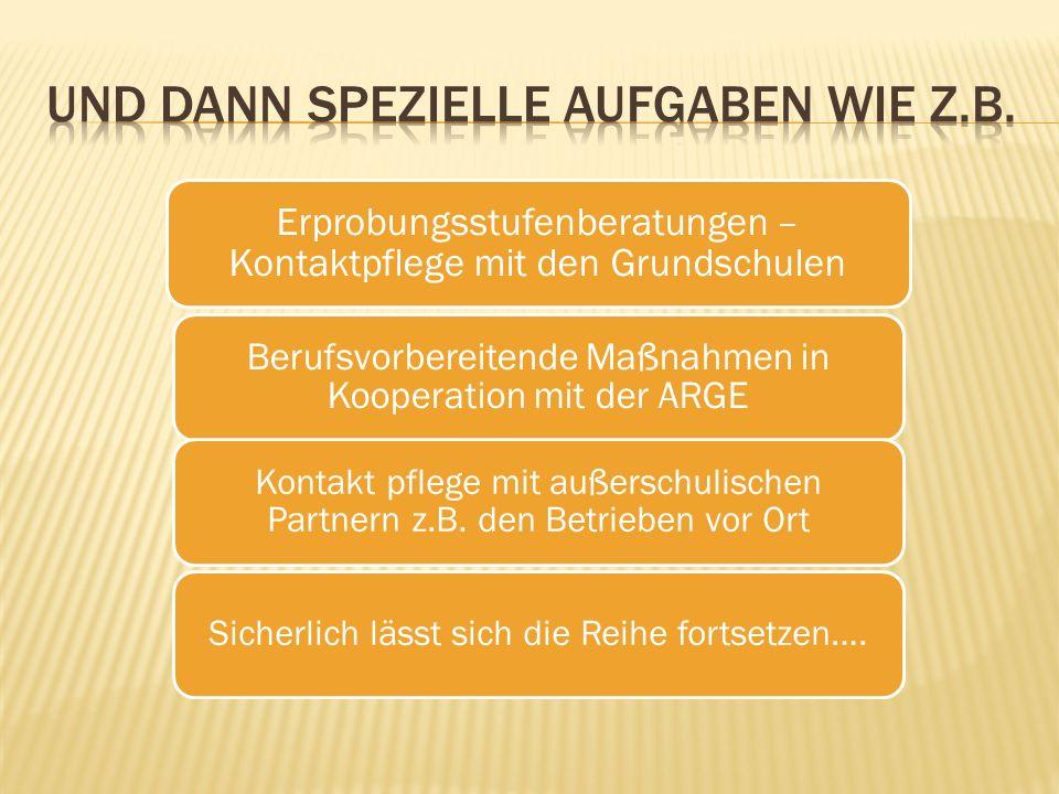 Erprobungsstufenberatungen – Kontaktpflege mit den Grundschulen Berufsvorbereitende Maßnahmen in Kooperation mit der ARGE Kontakt pflege mit außerschulischen Partnern z.B.