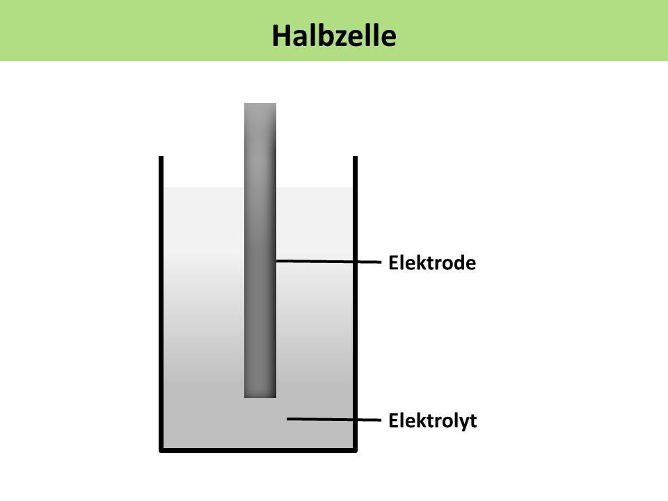 Halbzelle Elektrolyt Elektrode