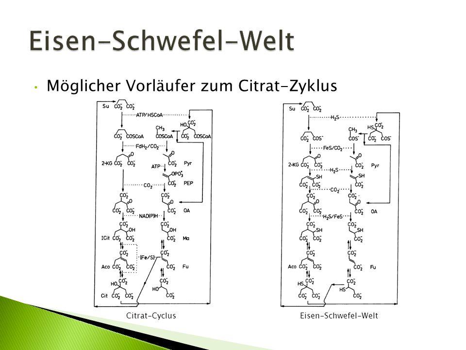 Möglicher Vorläufer zum Citrat-Zyklus Citrat-Cyclus Eisen-Schwefel-Welt