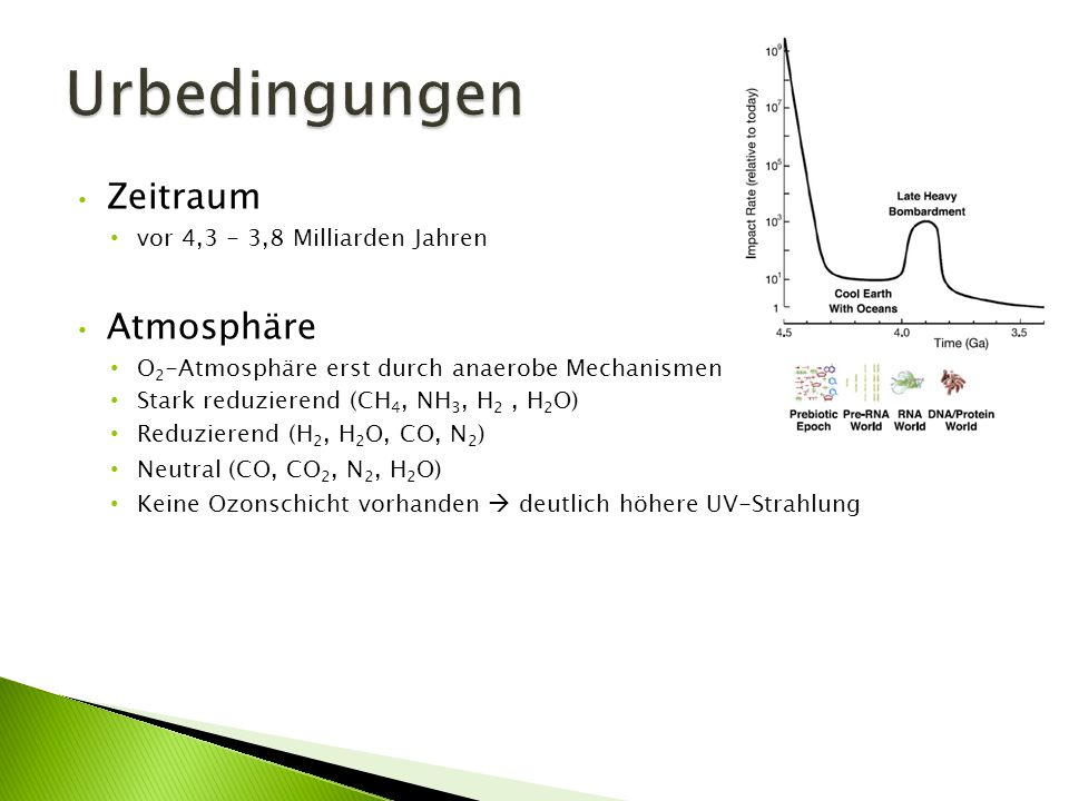 Zeitraum vor 4,3 - 3,8 Milliarden Jahren Atmosphäre O 2 -Atmosphäre erst durch anaerobe Mechanismen Stark reduzierend (CH 4, NH 3, H 2, H 2 O) Reduzie