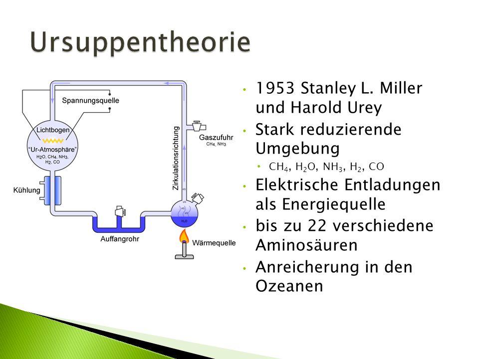 1953 Stanley L. Miller und Harold Urey Stark reduzierende Umgebung CH 4, H 2 O, NH 3, H 2, CO Elektrische Entladungen als Energiequelle bis zu 22 vers