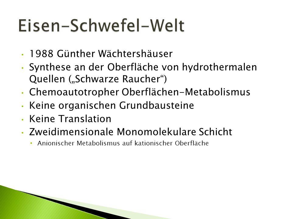 1988 Günther Wächtershäuser Synthese an der Oberfläche von hydrothermalen Quellen (Schwarze Raucher) Chemoautotropher Oberflächen-Metabolismus Keine o