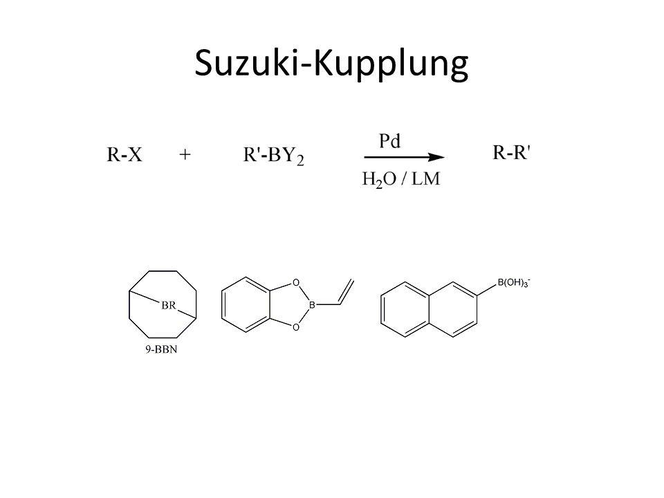 Suzuki-Kupplung