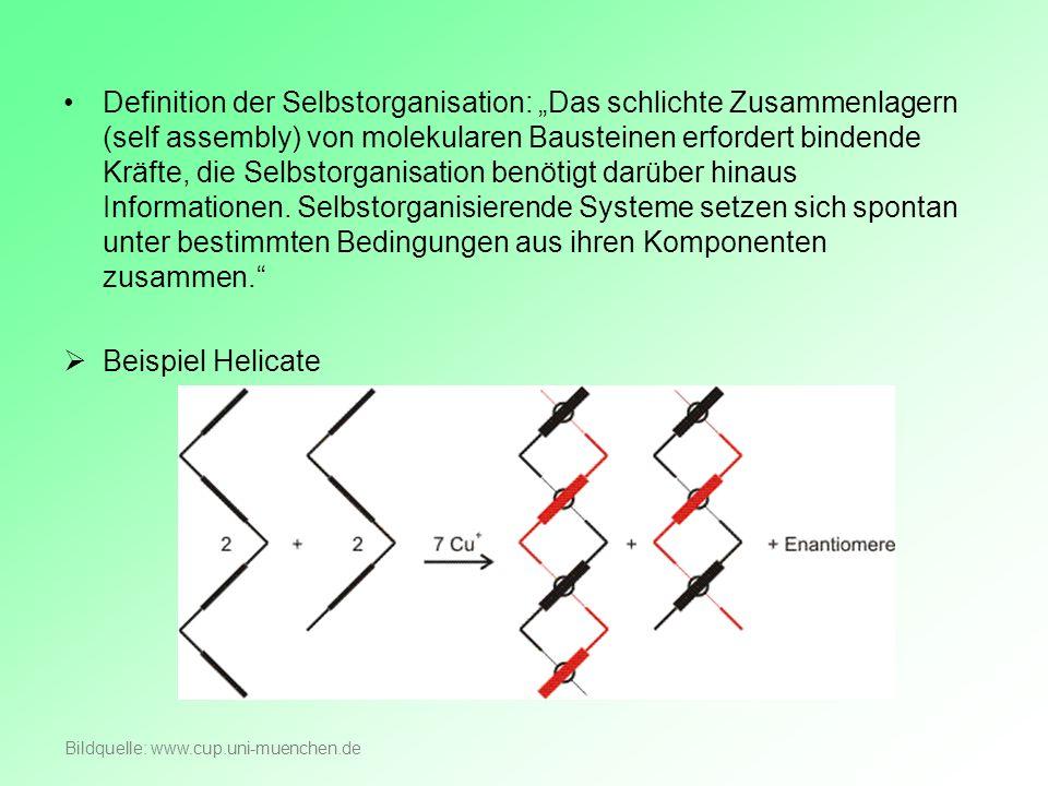 Definition der Selbstorganisation: Das schlichte Zusammenlagern (self assembly) von molekularen Bausteinen erfordert bindende Kräfte, die Selbstorgani