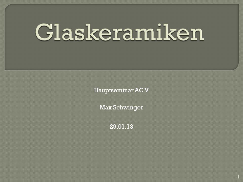 Max Schwinger Hauptseminar AC V 29.01.13 1