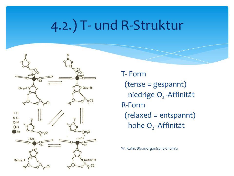4.2.) T- und R-Struktur T- Form (tense = gespannt) niedrige O 2 -Affinität R-Form (relaxed = entspannt) hohe O 2 -Affinität W. Kaim: Bioanorganische C