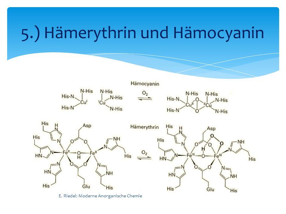 E. Riedel: Moderne Anorganische Chemie 5.) Hämerythrin und Hämocyanin