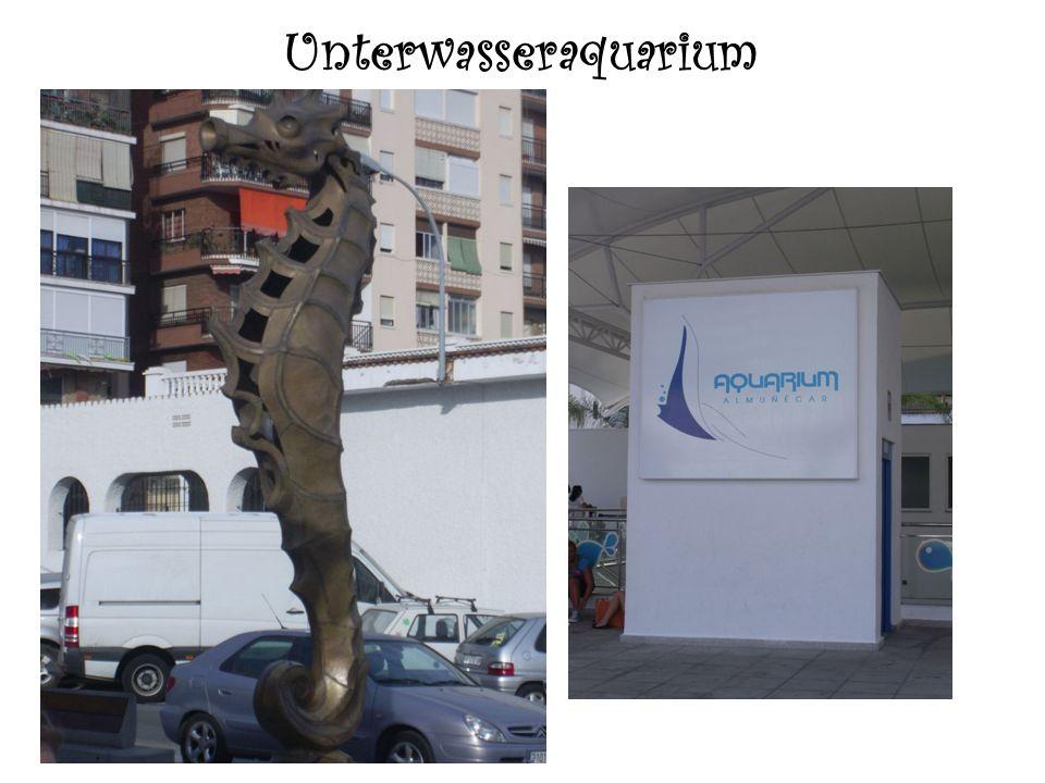 Unterwasseraquarium