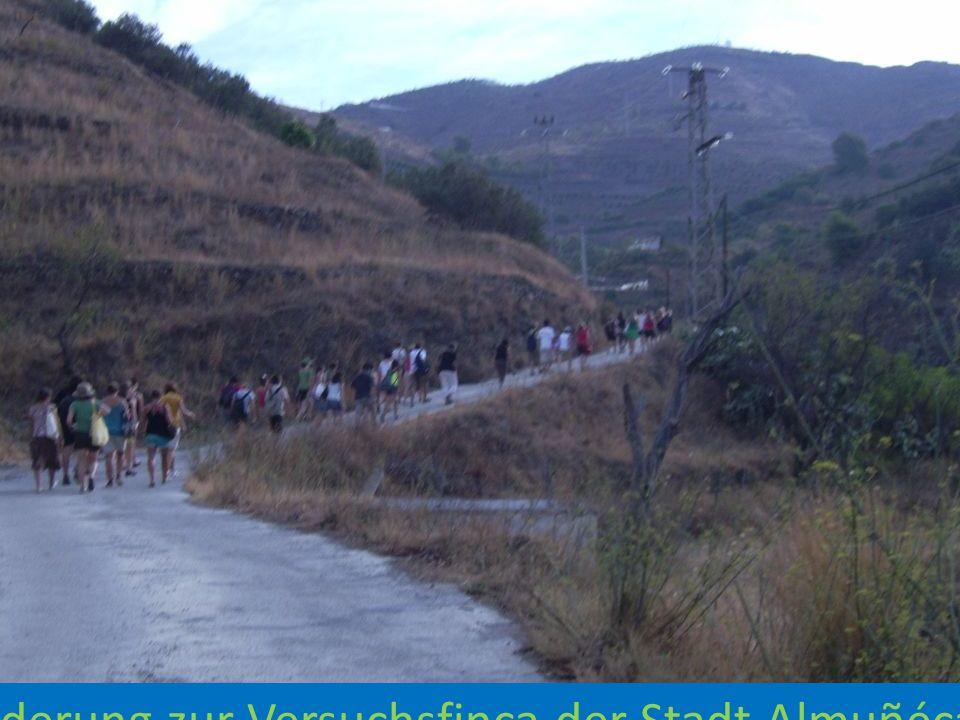 Wanderung zur Versuchsfinca der Stadt Almuñécar