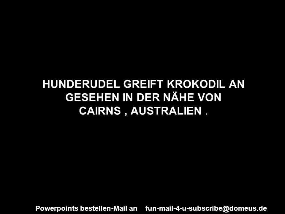 Powerpoints bestellen-Mail an fun-mail-4-u-subscribe@domeus.de HUNDERUDEL GREIFT KROKODIL AN GESEHEN IN DER NÄHE VON CAIRNS, AUSTRALIEN.