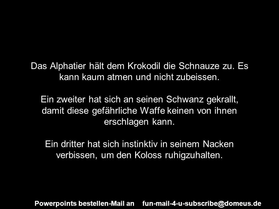 Powerpoints bestellen-Mail an fun-mail-4-u-subscribe@domeus.de Das Alphatier hält dem Krokodil die Schnauze zu. Es kann kaum atmen und nicht zubeissen