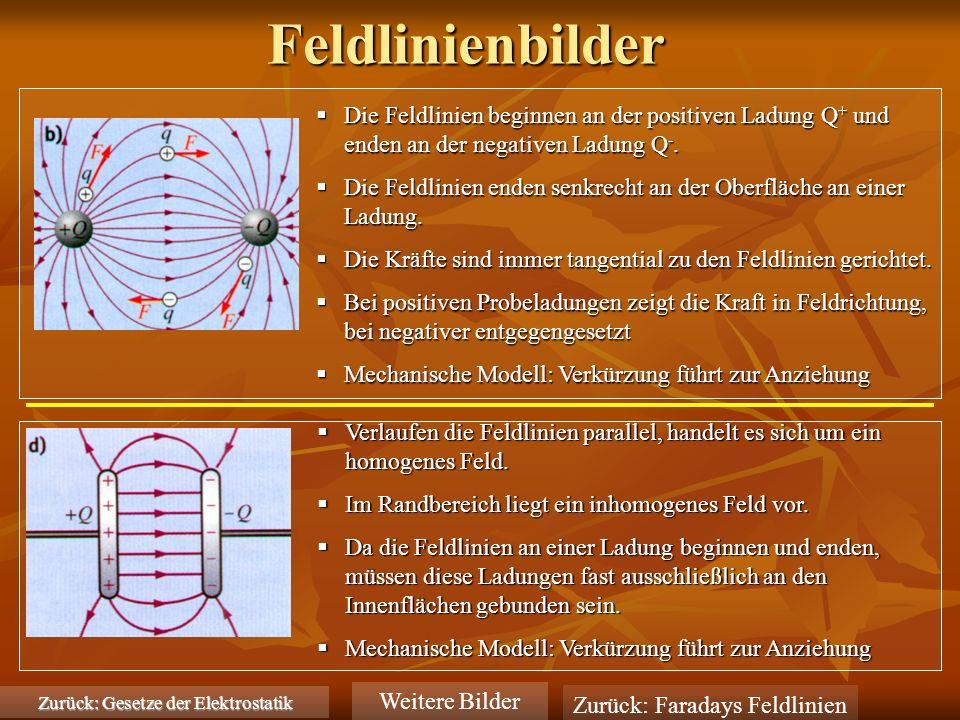 Feldlinienbilder Die Feldlinien beginnen an der positiven Ladung Q + und enden an der negativen Ladung Q -. Die Feldlinien beginnen an der positiven L