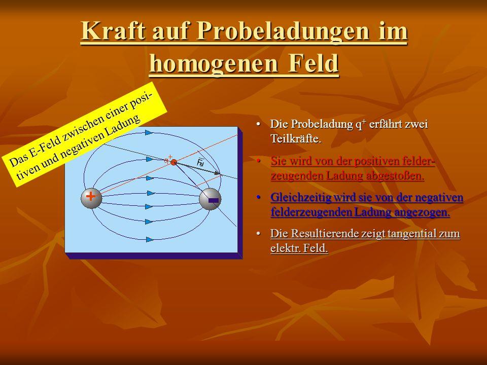 Kraft auf Probeladungen im homogenen Feld Das E-Feld zwischen einer posi- tiven und negativen Ladung Die Probeladung q + erfährt zwei Teilkräfte.Die Probeladung q + erfährt zwei Teilkräfte.