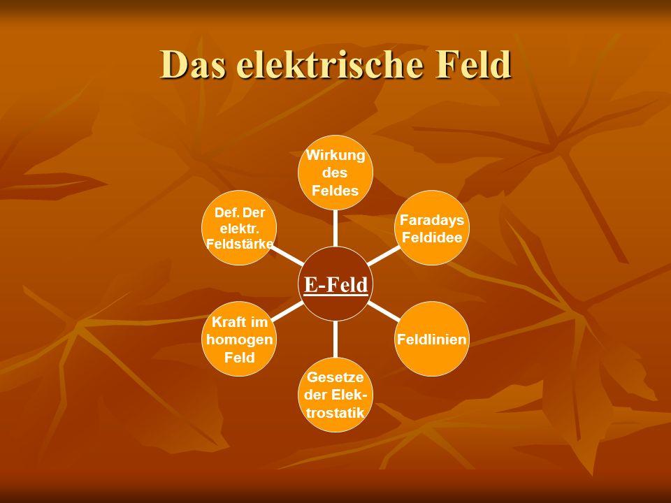 Das elektrische Feld Wie kann man Ladungen nachweisen.