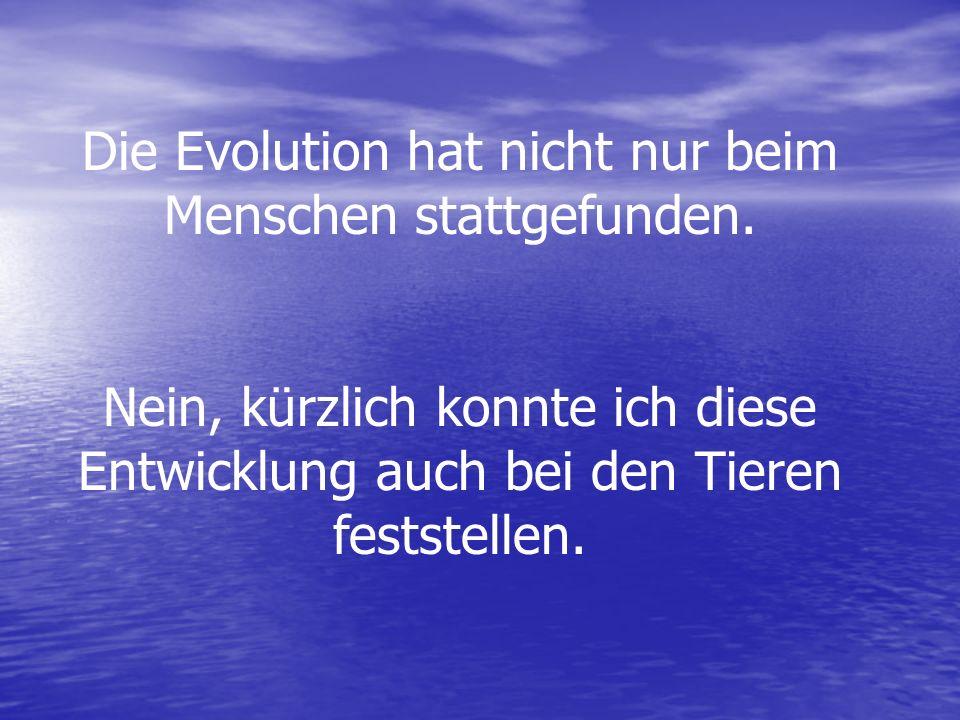 Die Evolution hat nicht nur beim Menschen stattgefunden. Nein, kürzlich konnte ich diese Entwicklung auch bei den Tieren feststellen.