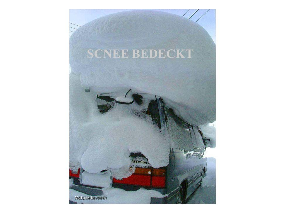 SCNEE BEDECKT