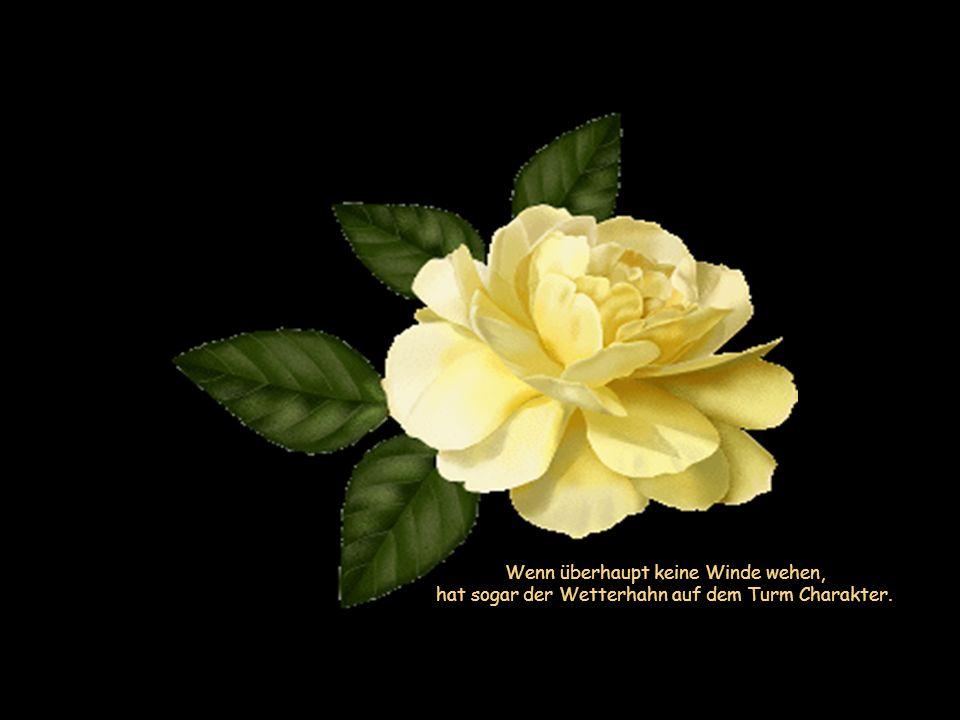 Im Unglück lernt man sich selbst am besten kennen, weil man nicht mehr durch Freunde abgelenkt wird.