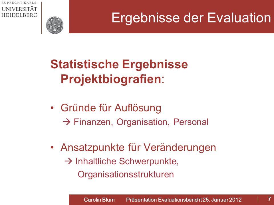 Ergebnisse der Evaluation Statistische Ergebnisse Projektbiografien: Gründe für Auflösung Finanzen, Organisation, Personal Ansatzpunkte für Veränderun