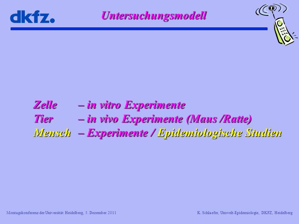 Montagskonferenz der Universität Heidelberg, 5. Dezember 2011K. Schlaefer, Umwelt-Epidemiologie, DKFZ, Heidelberg Untersuchungsmodell Zelle – in vitro